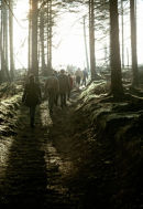 Young people walking out of a Forest.