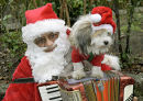 Santa with dog.
