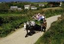 Sark transport, Channel Islands