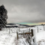 Highland Winter Scene