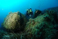 The Reef at Xatt l-Ahmar, Gozo