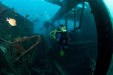 In the wreck of the Dori