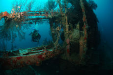 The Wreck of the Shakem, Grenada