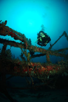The Wreck of the Rum Runner, Grenada