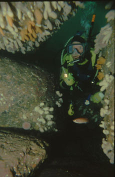 Diver at Creg y Jaghee, Isle of Man