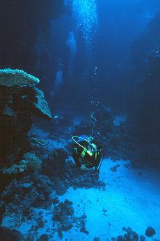 Malahi, Southern Egyptian Red Sea