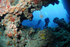 Coral Swim-through, Maria La Gorda