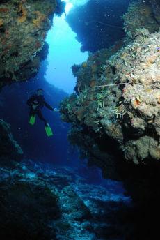 Swim-through, Maria La Gorda