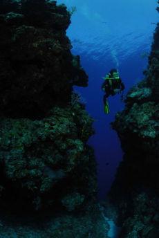 Channel from Reef Wall, Maria La Gorda