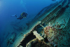 On the wreck of the minesweeper HMS Regulus