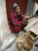 Moroccan Man Selling Hedgehogs