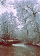 Winter Scene, New Mill Road, Finchampstead