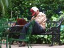 Having a Snooze! central Park, Havana