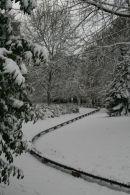 Snow, Goffs Park, West Sussex