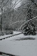 Snow in Goffs Park, West Sussex