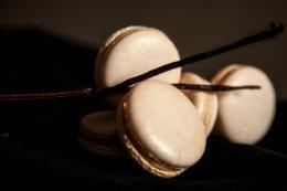 Macaron Marquee - Vanilla