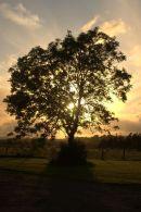Dunadd Sunset