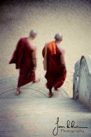 Buddhist Monks by Stairs