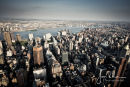 New York (42)
