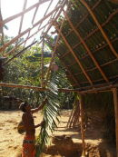Roofing forest shelter
