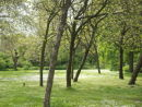 Open space, Mabley Green, Hackney