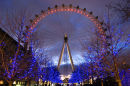 london_eye_night16