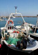 Xabia Fishing Fleet