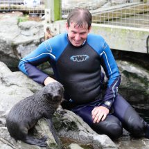 SEAL PUP SWIMMING LESSON 9