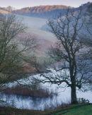Deep Dale Pond Light