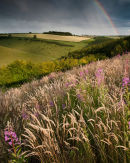 Summer Storm on Bishop Wilton Wold