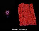 Mince the Hallucinator