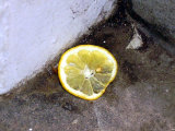 The loneliness of the lemon slice