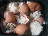 The marriage of eggshells and rice