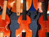 Viols