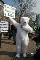 Polar bear attends the G20 summit demonstration